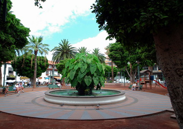 Plaza del Charco. [Pool Square]